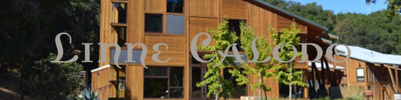 Linne Calodo - California Wine
